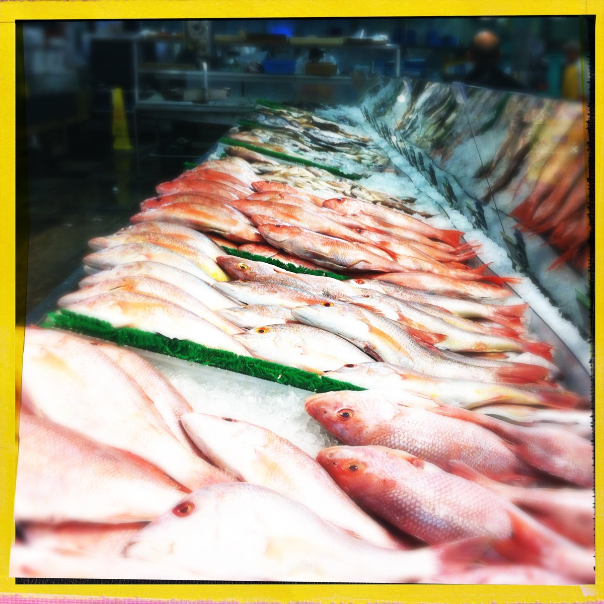 10 reasons to visit buford highway farmers market that don for Sushi grade fish market
